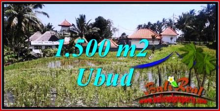 FOR SALE Beautiful LAND IN UBUD TJUB744