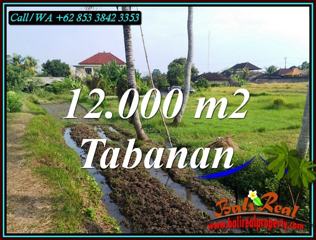 Beautiful LAND SALE IN TABANAN BALI TJTB502