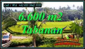FOR SALE Magnificent PROPERTY LAND IN PENEBEL TABANAN TJTB499C