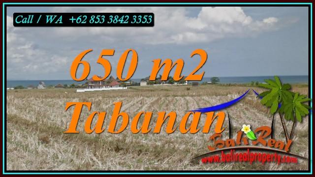 FOR SALE Affordable PROPERTY LAND IN TABANAN BALI TJTB453