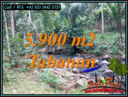 Magnificent SELEMADEG TABANAN BALI 5,900 m2 LAND FOR SALE TJTB458