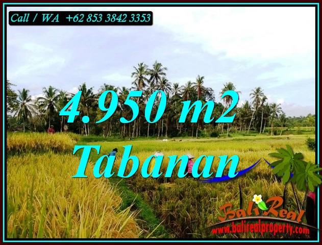 FOR SALE Beautiful PROPERTY 4,950 m2 LAND IN TABANAN TJTB464