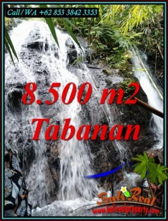 Exotic 8,500 m2 LAND IN SELEMADEG BALI FOR SALE TJTB478