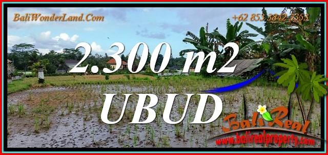 Exotic LAND in UBUD BALI for SALE TJUB813