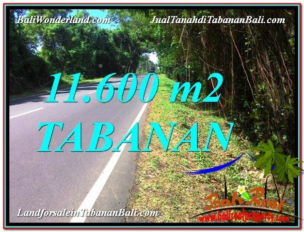 Magnificent PROPERTY LAND SALE IN Tabanan BALI TJTB327