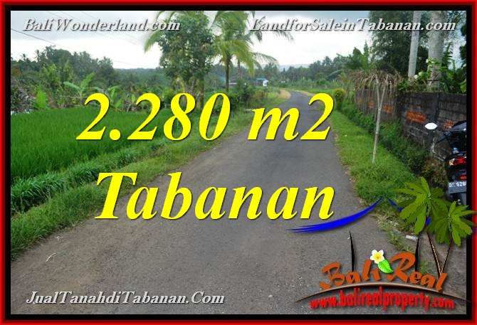 Exotic 2,280 m2 LAND FOR SALE IN TABANAN TJTB374