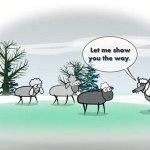 Useful tips to unmask the wolves' sheep clothing