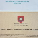 Thoughts from the release of PSLE results