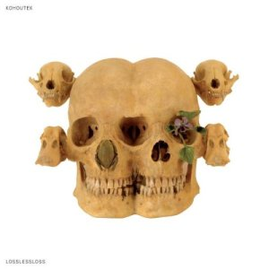Kohoutek | Lossless Loss | LP | 760137999010