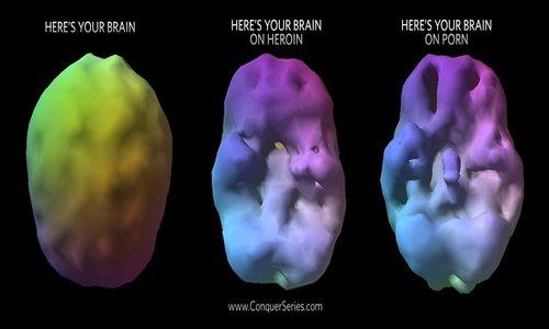 and brain Erotica the