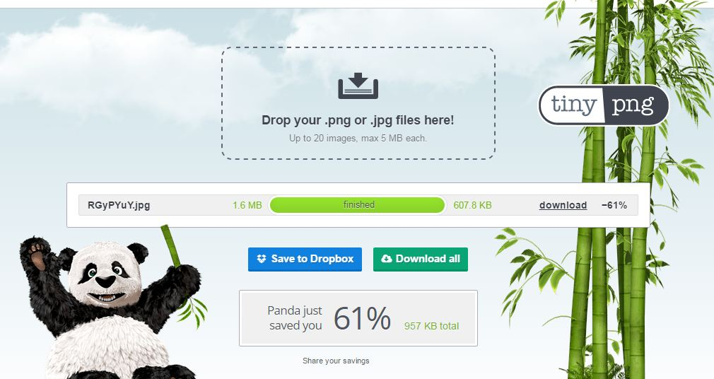 Reduce the Size of your Image from TinyPNG Website