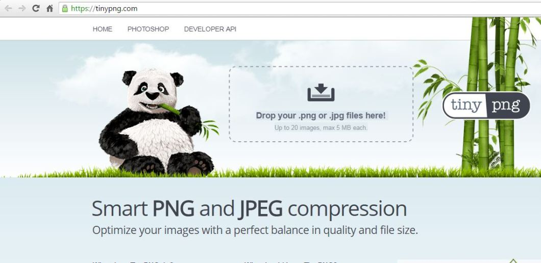 Tinyjpg -Best Online Image Compressor without Losing Quality
