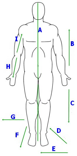 Introduction To The Human Body By Ambulancecpdcouk