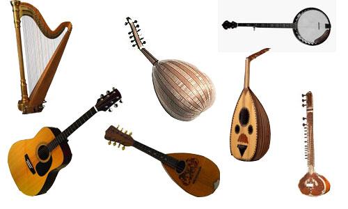 Resultat d'imatges de plucked string instruments