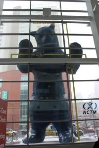 Bear at NCTM Denver