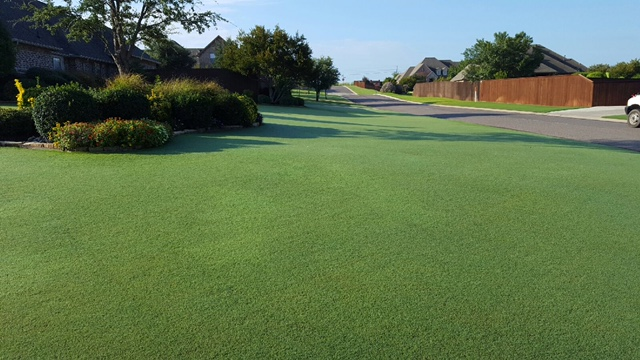 Proscapes Healthy Lawns