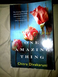 Book Review: One Amazing Thing