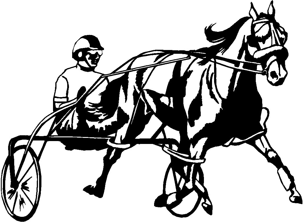 Horses Horse Animal Vinyl Car Or Wall Decal Stickers 18