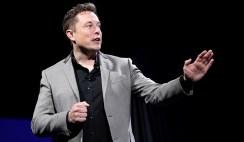 Thrilling Elon Musk Facts