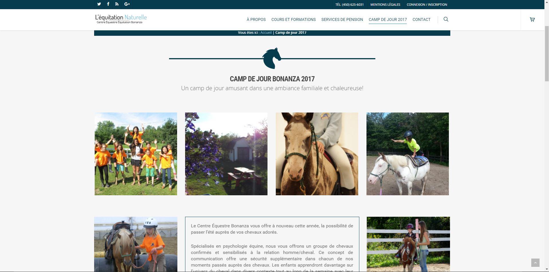 Agence web - Marketing digital - création site web - Protai-in -equitation bonanza
