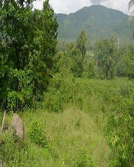 Land Sale, proteanrealestate.com, Protean Real Estate Company Limited, Real Estate Companies, Real Estate In Ghana, Properties For Sale, Properties For rent