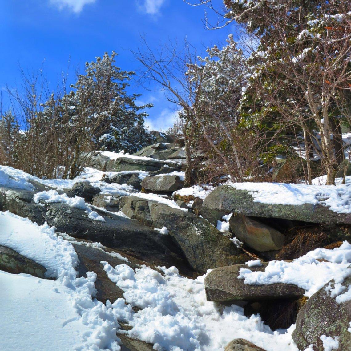 Rocky-Trail-Monadnock-20180407