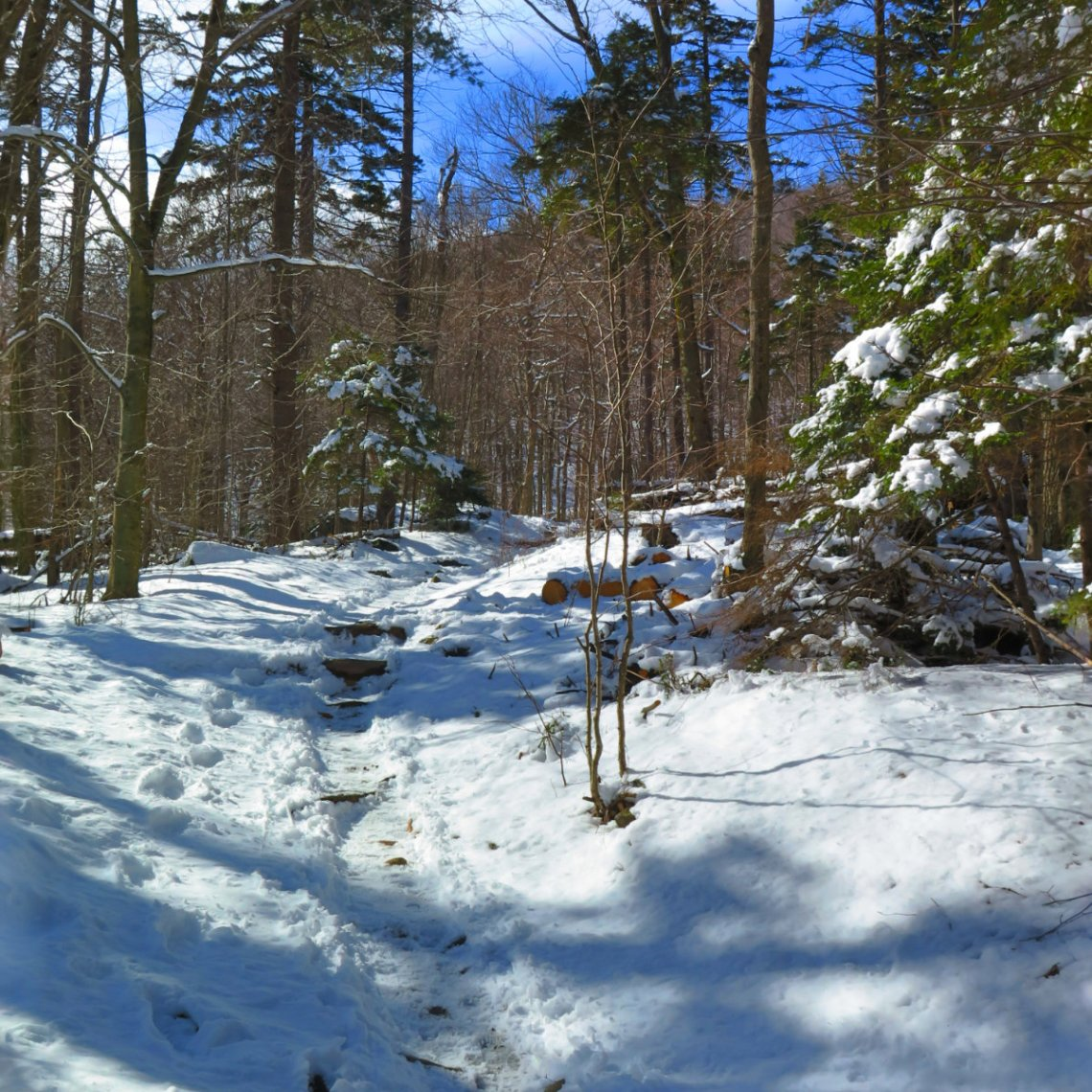 Snowy-Trail-Monadnock-20180407