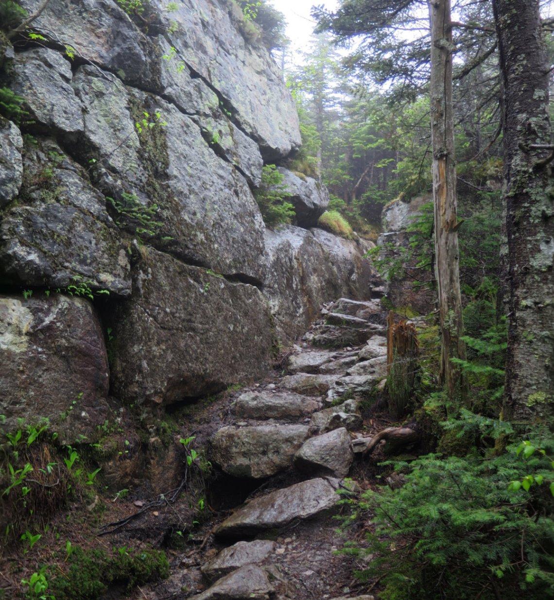 NTwin-Trail-20180614