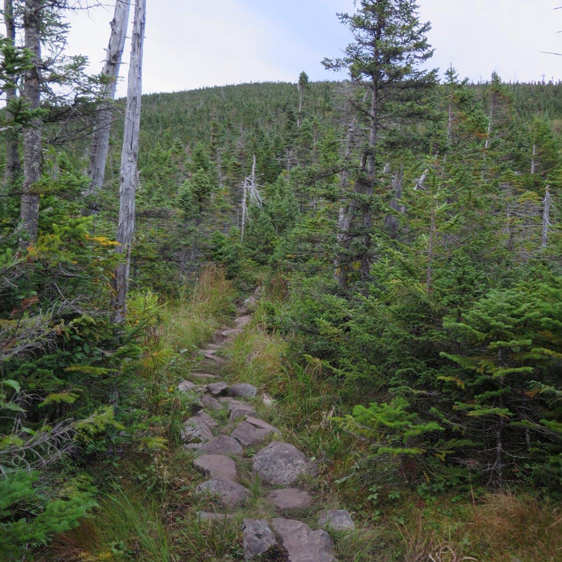 20180906-Spaulding-Trail