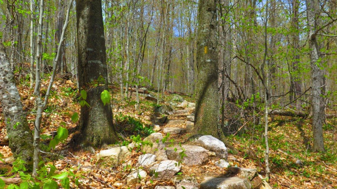 Tecumseh-Trail1-20190522