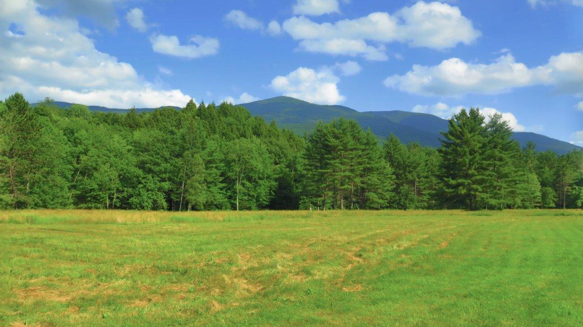 Kinsman_Mountains_from_field_20190713