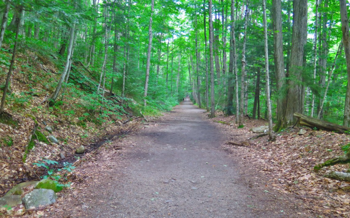 LW_Trail_Owls_Head-2019-08-10