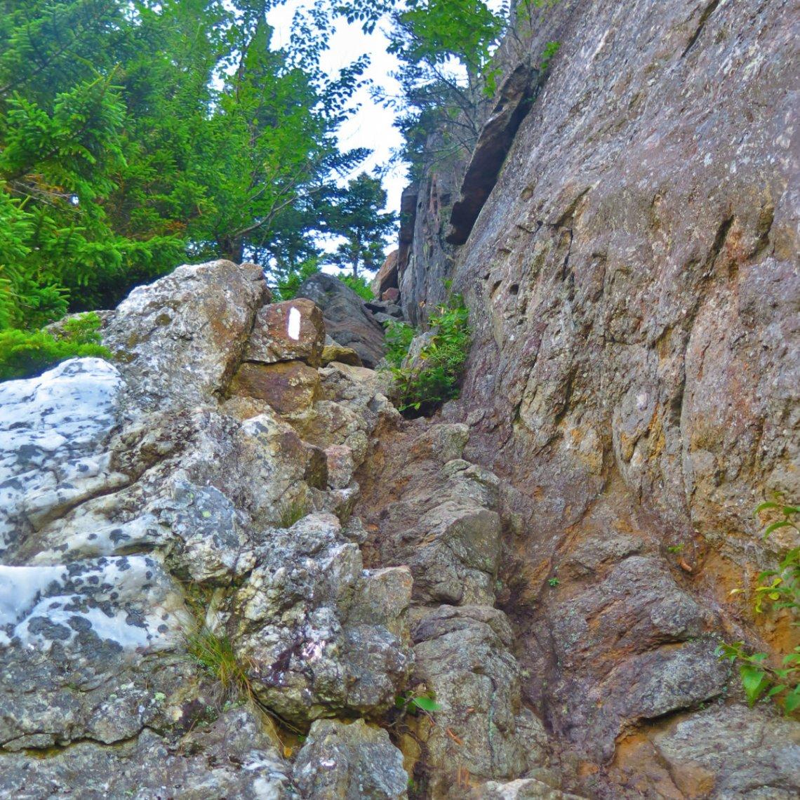 Steep-Trail-Wildcat-20190822