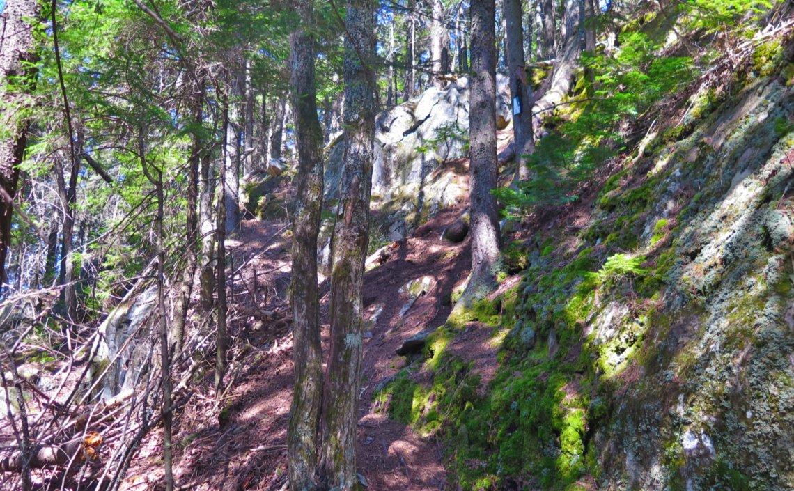 12-Steep-Up-Trail-Ragged-20200520