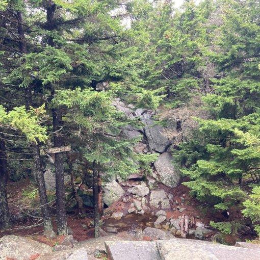 Mt Monadnock Pumpelly Trail