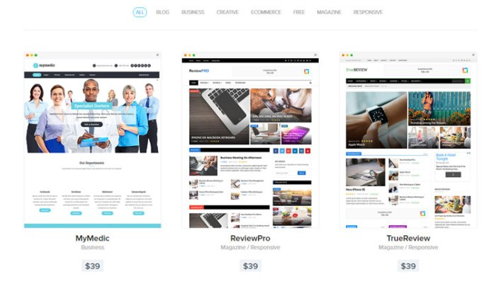 Affordable Responsive WordPress Theme
