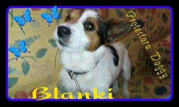 blanky-2