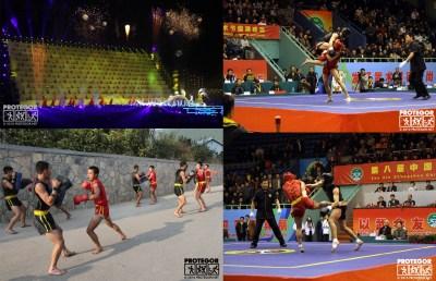Shaolin 2010