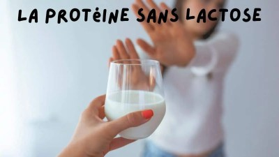 Read more about the article La protéine sans lactose: le blanc d'oeuf en poudre