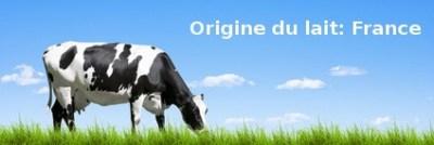 Quelle différence entre protéine totale de lait et whey?