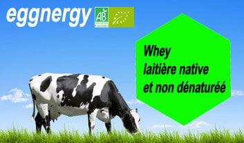 Protéine laitière Native Bio et non dénaturée