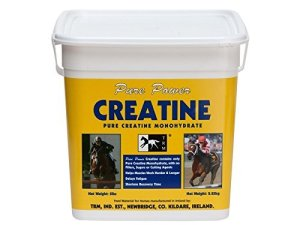 Pure Power Creatine Einz elfutt ermittel pour les muscles