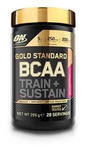 Optimum Nutrition ON GS BCAA Train & Sustain Pêche – Passion 266 g