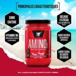 BSN Nutrition Amino X, BCAA Poudre, Complement Alimentaire avec Vitamine D et Acides Aminés, Saveur Pastèque, 30 Portions, 435g