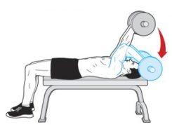 triceps med stang fra hode