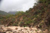 Wadi Ajhaft1