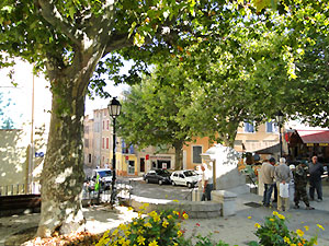 Rians Haut Var Provence Verte