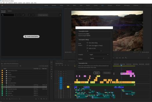 Adobe Premiere Pro transcriptions
