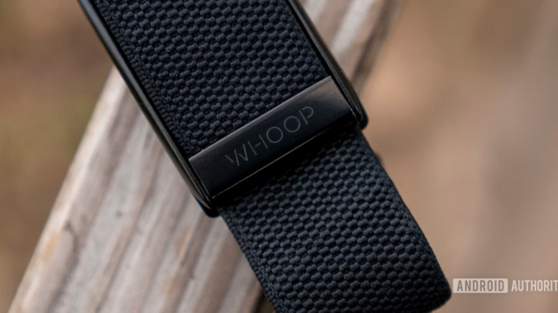 Personalized strain and recovery on your wrist