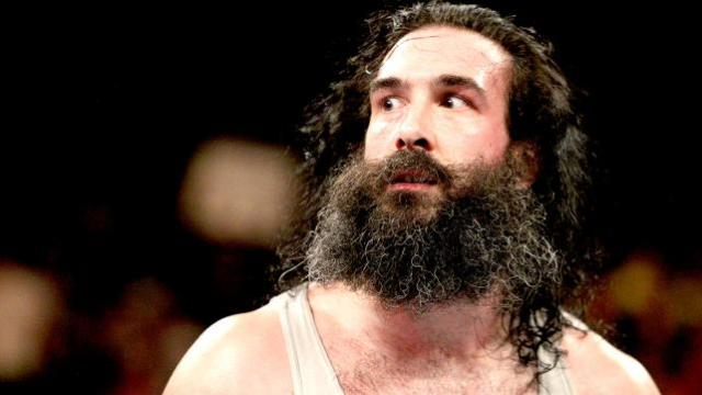 Luke Harper Profile